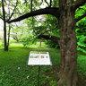 Zagreb Botanical Garden 2