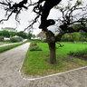 Zagreb Botanical Garden 4