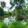 River Odra