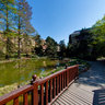 Zagreb Botanical Garden - 03