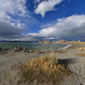 Tufa at Mono Lake beach