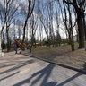 In Tolstoy's park