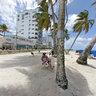 Playa Y Palmeras En San Andres Isla