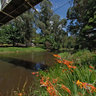 Yarra River, Warburton