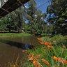 Yarra River, Warburton