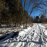 Boyd Conservation Area - Winter Hike Along the Humber
