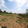 Shanxi Province in jincheng ze zhou park0004