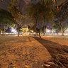 The ancient tree at Lenin Park, Hanoi