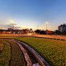 Twilight on Cau Giay cross - Hanoi