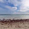 Holnis Surf Beach