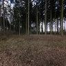 Appelbeck am See, Rundweg