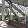 Belarus, Minsk, Botanical Garden, Inside New Greenhouse