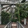 Belarus, Minsk, Botanical garden, Greenhouse