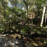 Riacho em Gonçalves