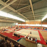 Departmental gymnastic competition