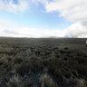 Páramo en Chimborazo