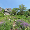 Termessos - Gymnasium (first view)