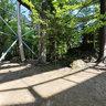 Nationalpark Bayerischer Wald - Im Baumturm (Baum-Ei)