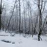 Iarna pe Tâmpa