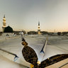 Roof of the Prophet's Mosque-1