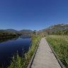 Tidal River Boardwalk