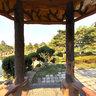 长春牡丹园----小亭内,Changchun bowl,