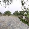 Asakura. Water mill