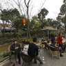 Chengdu Sam Shing Township - Happiness Merlin-4
