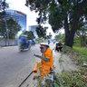 Performing Street Monkey, Jakarta