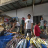 Fishmonger, Kendari, South East Sulawesi