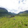 Guridalen