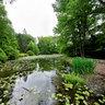 Montgomery Pinetum Park, Cos Cobb, CT