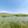 Castiglione della Pescaia-Diaccia Botrona-Reserve