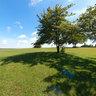 Mitchell Airport Park
