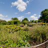 The Walled Garden, Brockwell Park