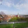 Bratislava Castle and city
