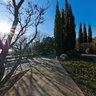 Massandra park - Yalta Intourist