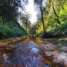 Golden stream Sapa