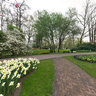 Keukenhof