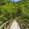 Mount Olympus Enipeas Wooden Bridge 7 Greece