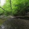 Rudice underground stream entrance - Moravian Karst
