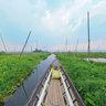 Floating Garden - Inle Lake, Nam Pilu, Shan, Myanmar