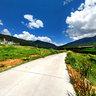 Lulang Forest Sea 2  Nyingchi Tibet