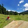 Lulang Forest Sea 3  Nyingchi Tibet