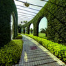 the green wall in Hong Cheng Park Guangzhou