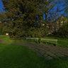 Park Arboretum