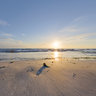 1st springlights March 2011: Sunrise at sandy beach