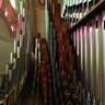 Organ-pipe